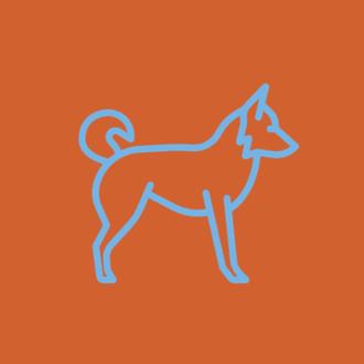 Assinatura de comida natural para cães idosos de porte Pequeno (10 a 15 kg)