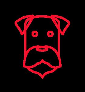 cachorro idosos icones