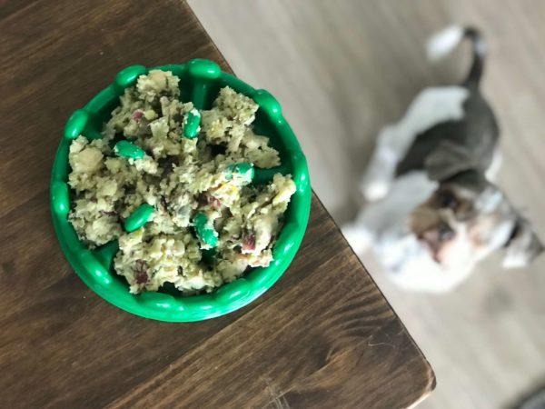 comida natural para cachorro AN canina pote verde mascote fit comedouro lento alimentacao natural