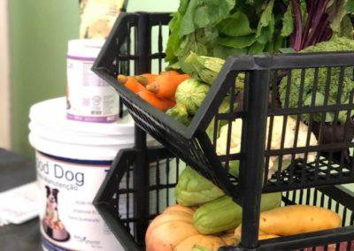 alimentação natural para caes e gatos