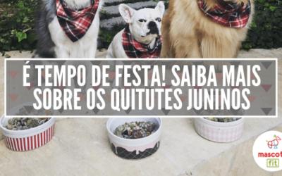 Cachorro e festa junina? Saiba quais comidas juninas NÃO podem ser dadas pro seu cão de jeito nenhum!