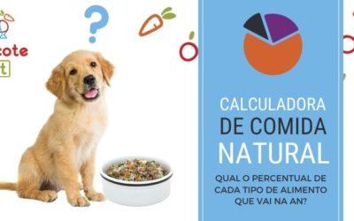 Calculadora de AN: saiba qual o percentual de proteína, carboidratos e outros alimentos compõem uma dieta de alimentação natural