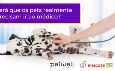 Será que os pets realmente precisam ir ao médico?